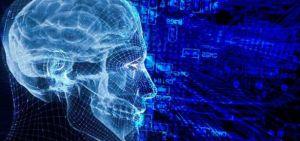 cerebro-información